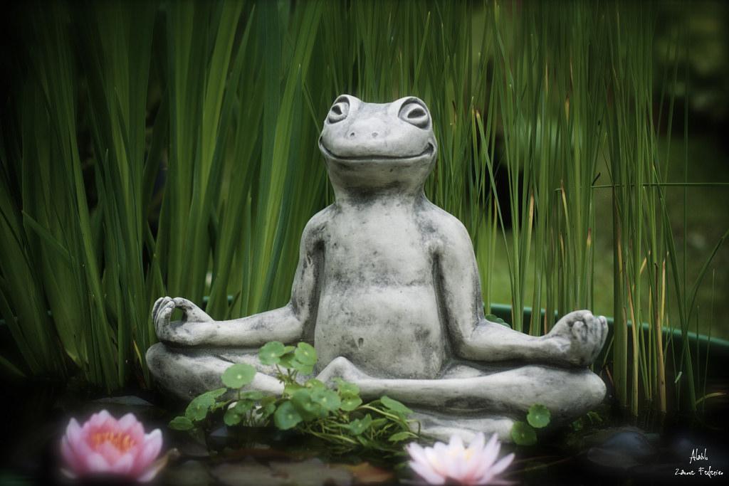 Prenderla zen